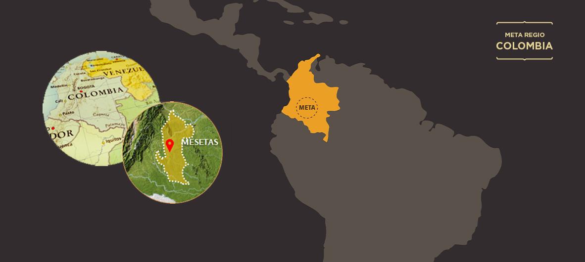 Colombia, Meta-regio